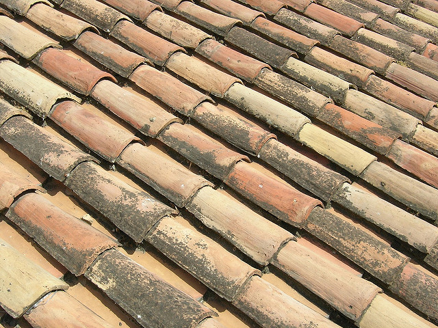 Why does Europe dry fix their roof ridges? A lesson for Australia.